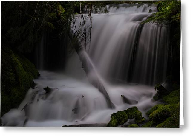 Quiet Falls Greeting Card by Mike Reid