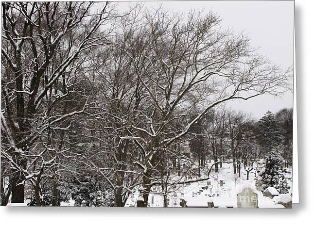 Greeting Card featuring the photograph Quiet by Melissa Stoudt