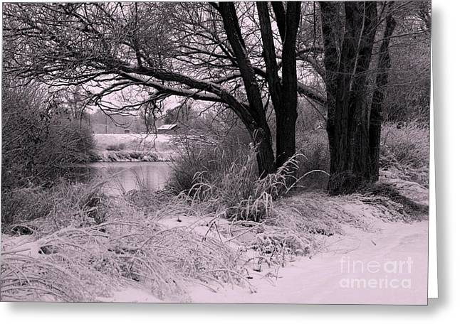 Quiet Morning After Snowfall Greeting Card by Carol Groenen