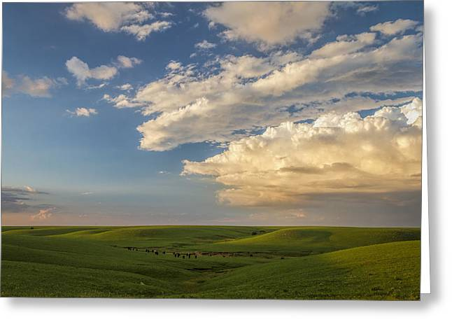 Quiet On The Prairie Greeting Card