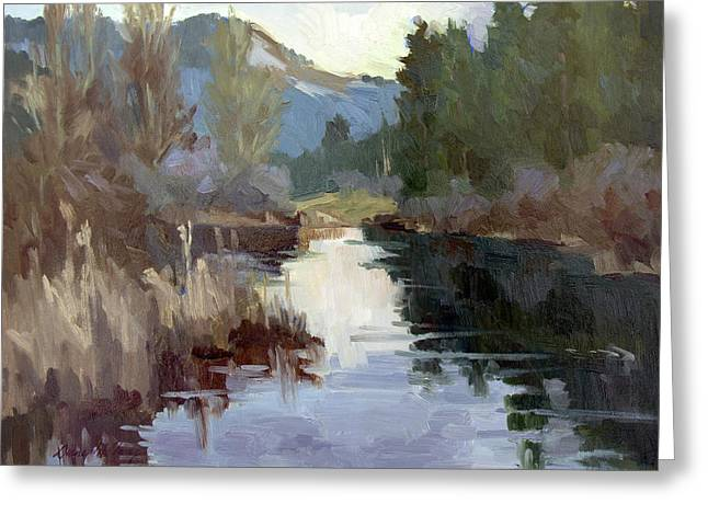 Quiet Reflections At Harry's Pond Greeting Card by Diane McClary