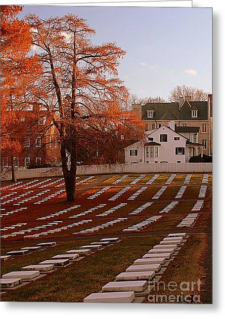Greeting Card featuring the photograph Quiet Respect by Geri Glavis