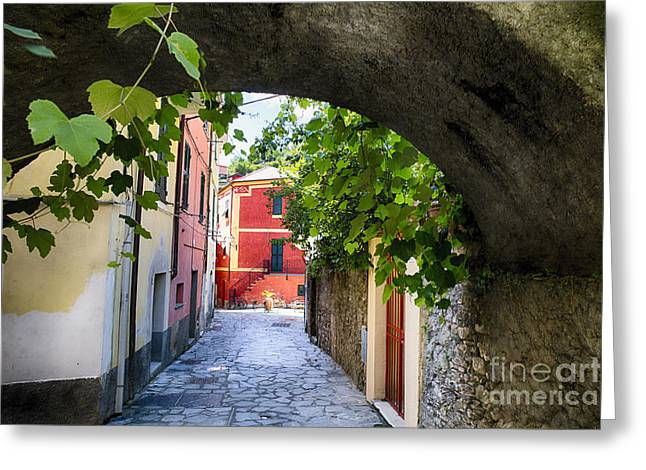 Quiet Street In Monterosso Greeting Card by George Oze