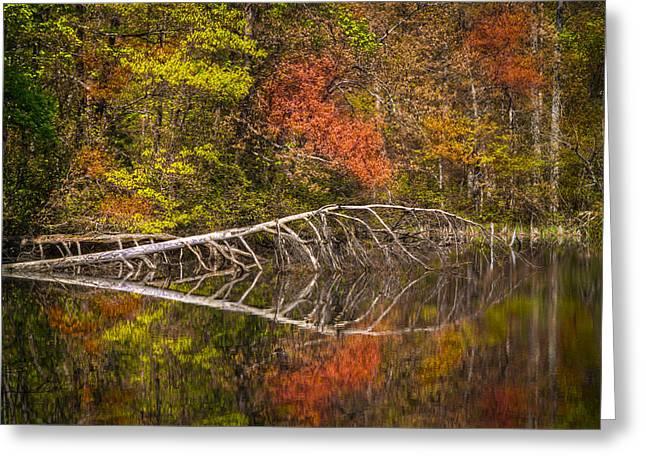 Quiet Waters In Autumn Greeting Card by Debra and Dave Vanderlaan