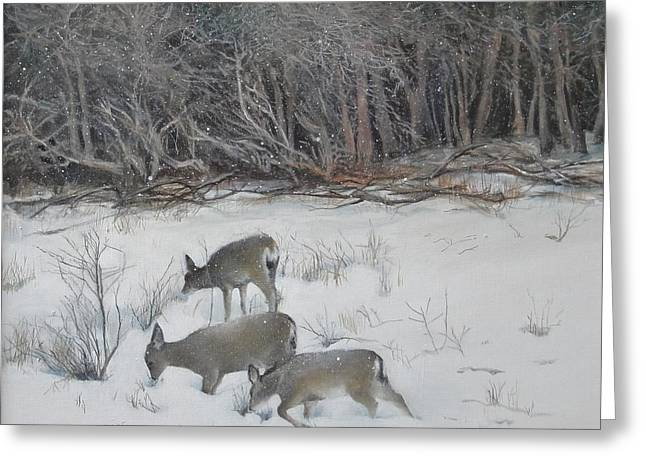 Quiet Winter Day  Greeting Card by Terri Ana Stokes