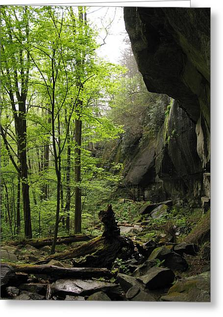 Quilliams Cave Greeting Card by Melinda Fawver