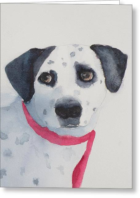 Quincy Greeting Card by Lori Chase