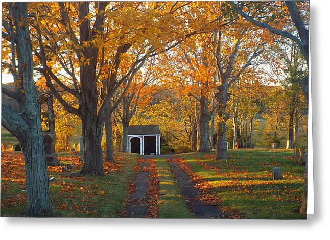 Greeting Card featuring the photograph Quivet Morning by Dianne Cowen