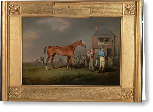 Quiz, After His Last Race At Newmarket Portrait Of `quiz Greeting Card by Litz Collection