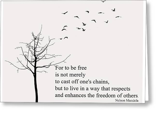Quote- Nelson Mandela Greeting Card by Trilby Cole