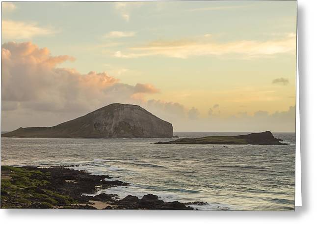 Greeting Card featuring the photograph Rabbit And Turtle Island At Sunrise 1 by Leigh Anne Meeks