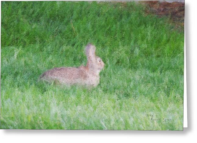 Rabbit In The Grass Greeting Card by Michael Stowers
