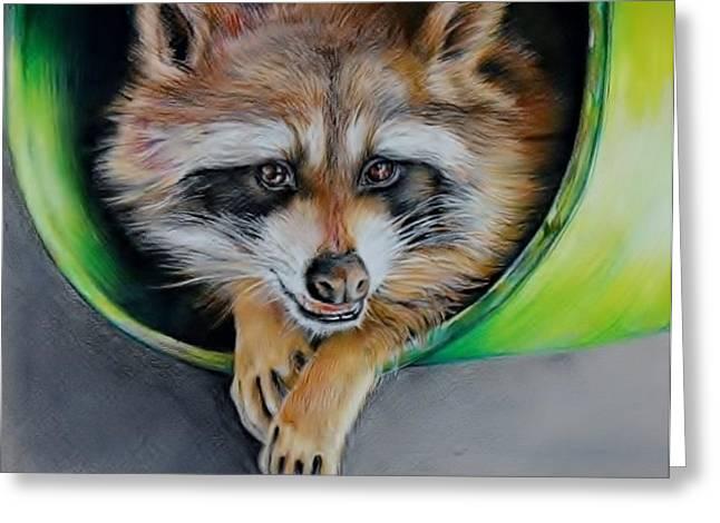 Raccoon  Greeting Card by Jean Cormier