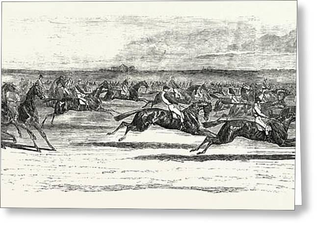 Race Horses Starting At The Derby Greeting Card