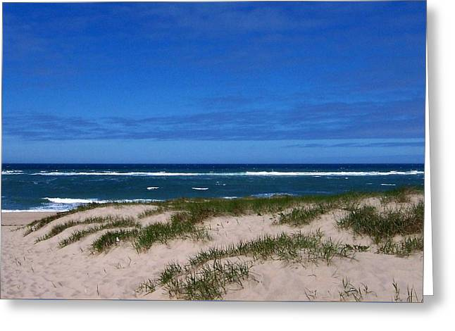 Race Point Beach Greeting Card by Catherine Gagne