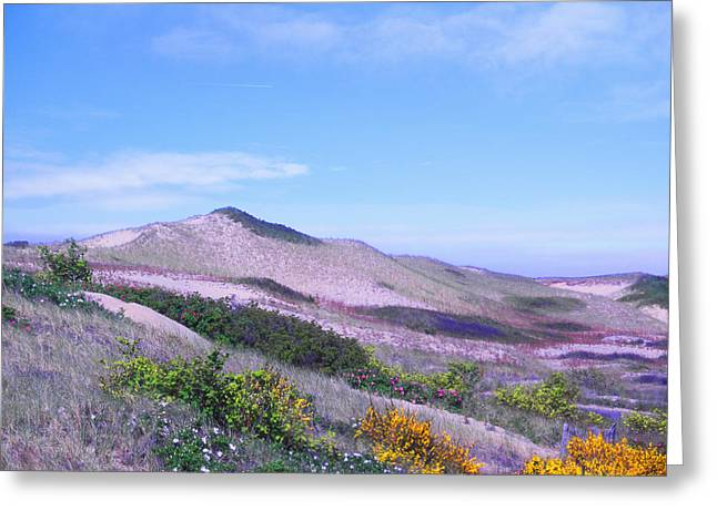 Greeting Card featuring the photograph Race Point Dunes by David Klaboe