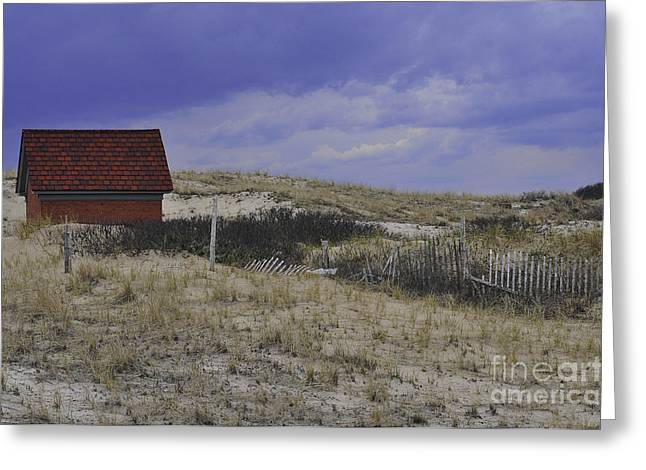 Race Point Light Shed Greeting Card by Catherine Reusch Daley