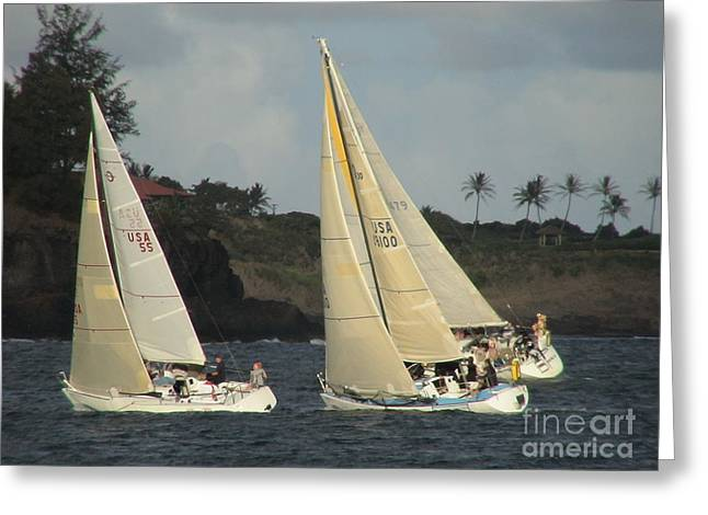 Racing In Kauai Greeting Card