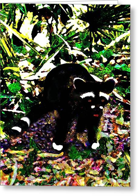 Racoon At Faver-dykes Park Greeting Card by Dane Ann Smith Johnsen
