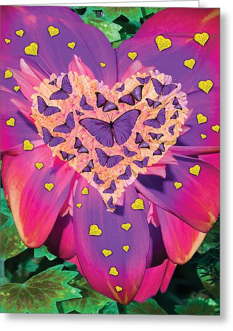 Radiant Butterfly Heart Greeting Card by Alixandra Mullins