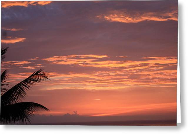 Greeting Card featuring the photograph Radiant Sunset 2 by Karen Nicholson