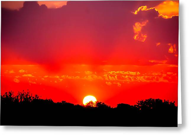 Greeting Card featuring the photograph Radiant Sunset by Dee Dee  Whittle