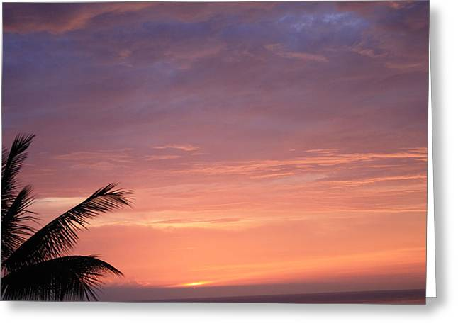 Greeting Card featuring the photograph Radiant Sunset by Karen Nicholson
