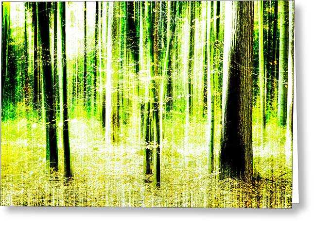 Radiation Forest Greeting Card