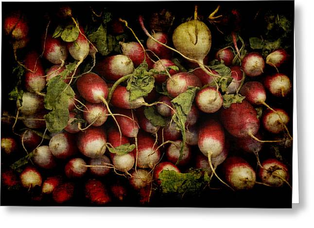 Flemish Radish Art Greeting Card