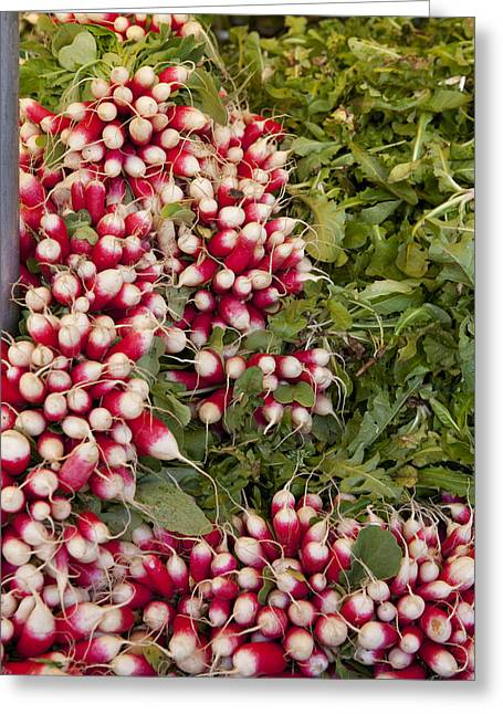 Radishes Greeting Card by Art Ferrier