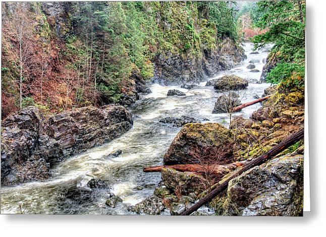 Raging River Greeting Card by James Wheeler