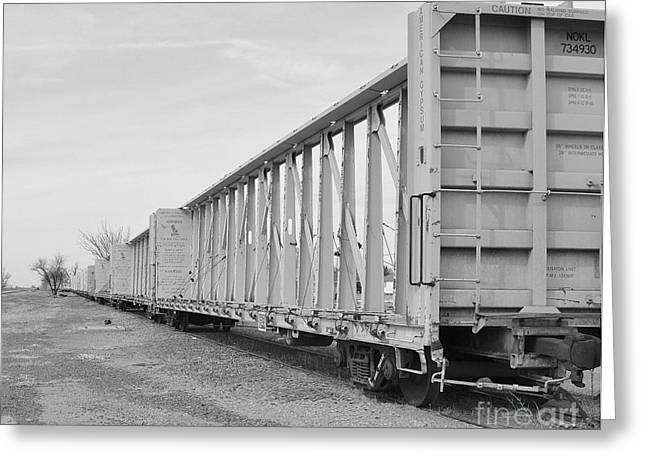 Rail Cars Greeting Card