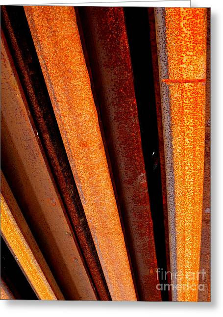 Greeting Card featuring the photograph Rail Lines 2 by Robert Riordan