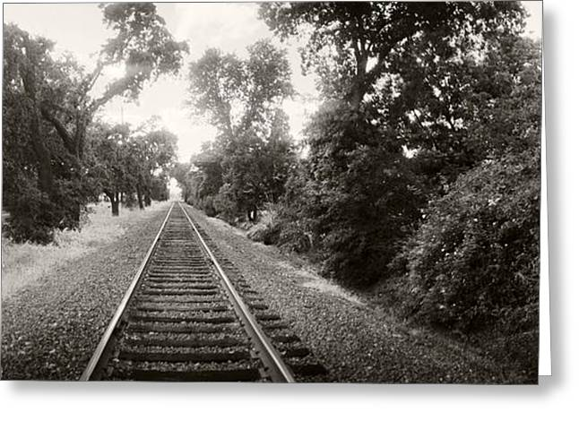 Railroad Track, Napa Valley Greeting Card by Panoramic Images