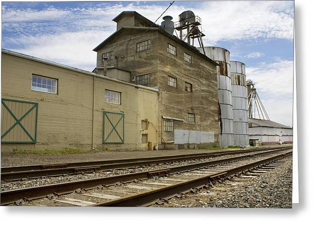Railway Mill Greeting Card by Sonya Lang