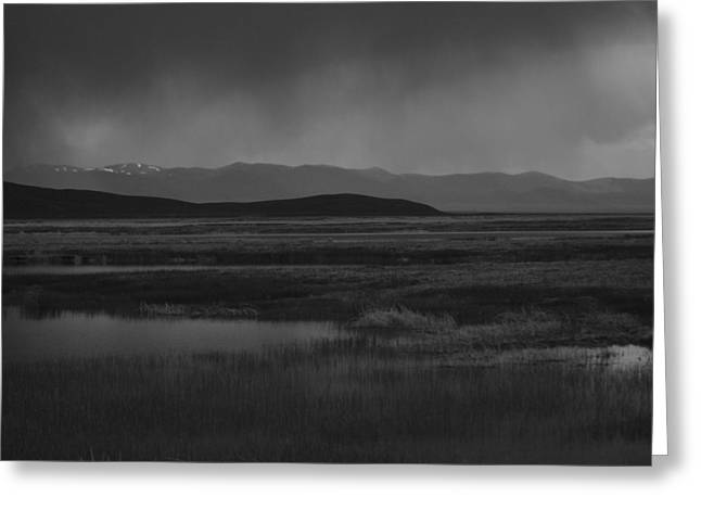 Greeting Card featuring the photograph Rain At The Marshes by Jenessa Rahn