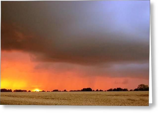 Rain Burst Greeting Card by Dave Woodbridge