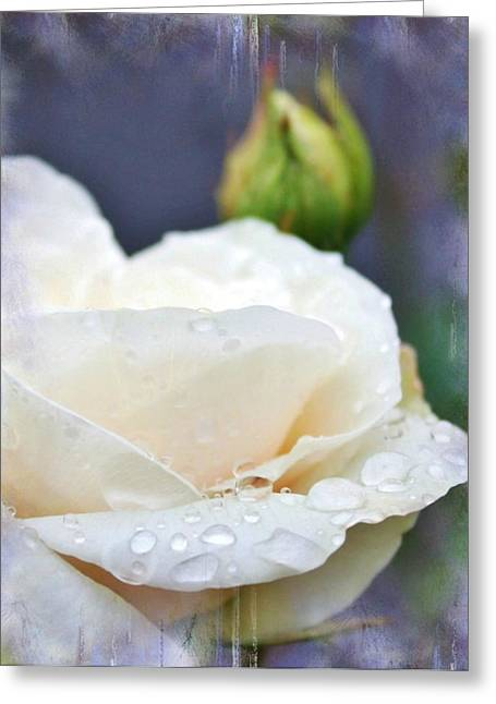 Rain Drops On Roses Greeting Card by Cathie Tyler