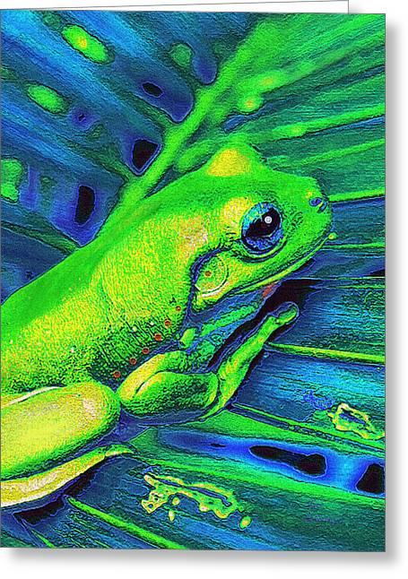 Rain Forest Tree Frog Greeting Card