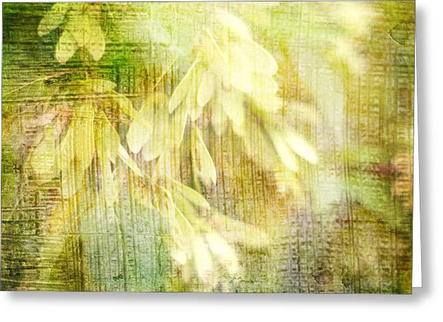 Rain On Leaves Greeting Card by Suzanne Powers