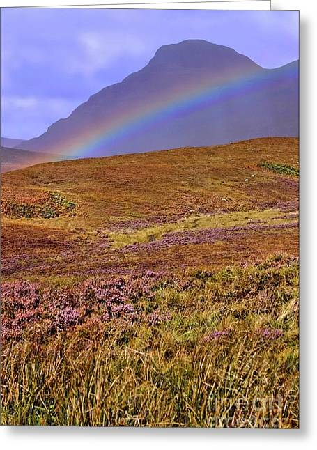 Rainbow And Heather Greeting Card by Henry Kowalski