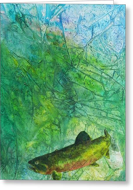 Rainbow Environment Greeting Card