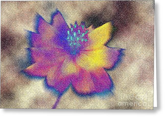 Rainbow Flower Greeting Card
