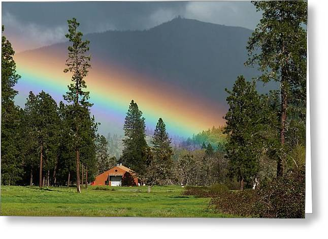 Greeting Card featuring the photograph Rainbow Forest by Julia Hassett