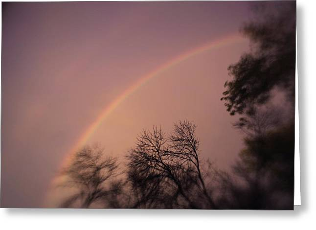 Rainbow Greeting Card by Heather Green