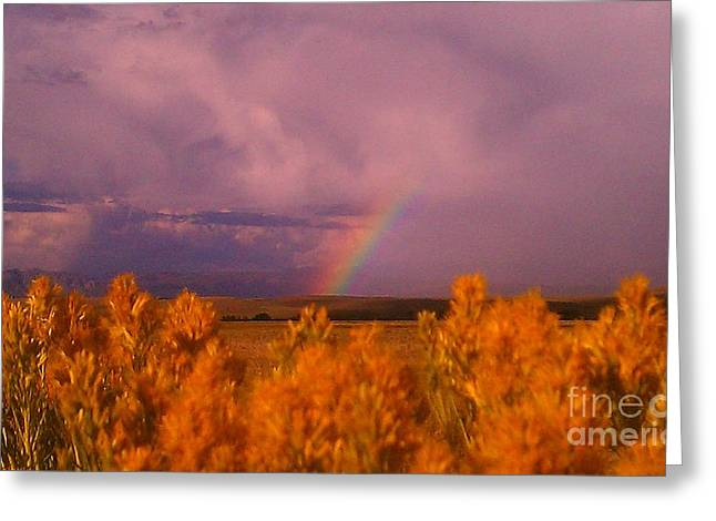 Rainbow In The Plains Greeting Card by Chris Tarpening