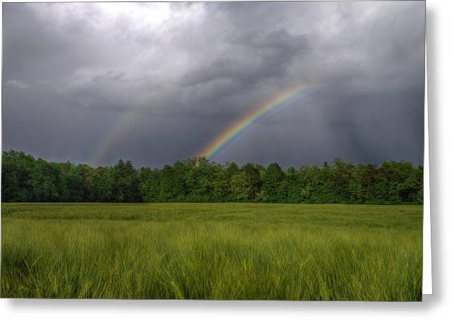 Rainbow Greeting Card by Ivan Slosar