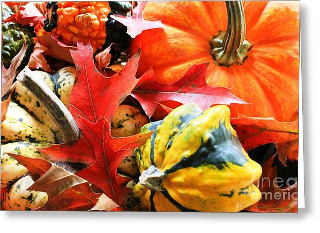Rainbow Of Autumn Colors Greeting Card by Judy Palkimas