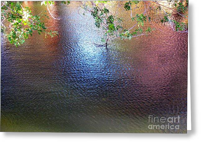 Rainbow Pond Greeting Card by Maureen J Haldeman