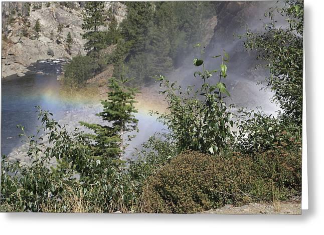 Rainbow Greeting Card by Shelley Ewer